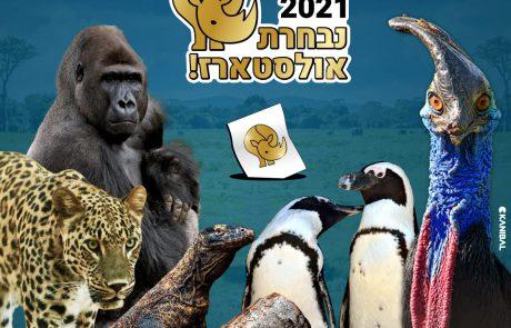 בחירות 2021 – נבחרת האולסטארז בספארי