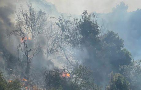 אל יום השריפות מצטרפת שריפה נוספת: שדה נשרף בעין חמד; מטוסי כיבוי הוזעקו לסייע