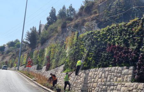 הכניסה החדשה לירושלים: הקיר הירוק הגדול בישראל נחנך היום בכניסה לירושלים