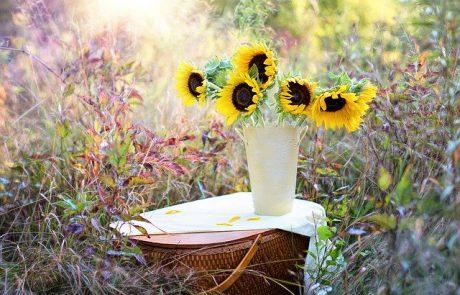 לקנות פרחים ולשמח אחרים